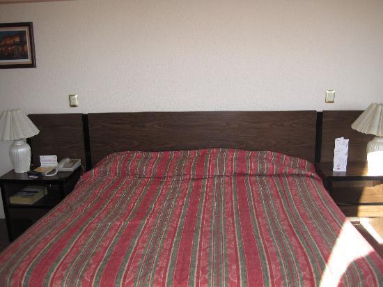 Hotel Real Plaza: la cama