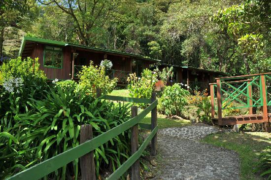 Trogon Lodge San Gerardo de Dota : Trogon Lodge room overview