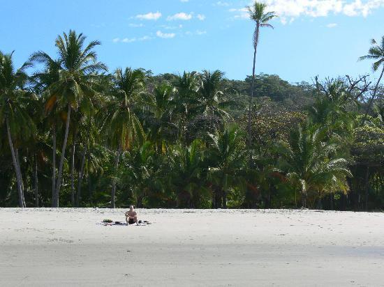 Manala Hotel: la plage tout près