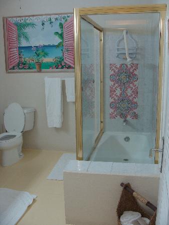 Carringtons Inn St. Croix: Flamboyant Shower