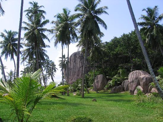 Paradise Sun : Sister Island come Jurassic Park