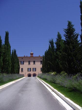 Relais Villa Grazianella - Fattoria del Cerro: viale accesso villa