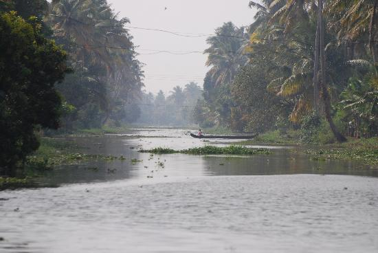 Punnamada Lake: One of the many canals