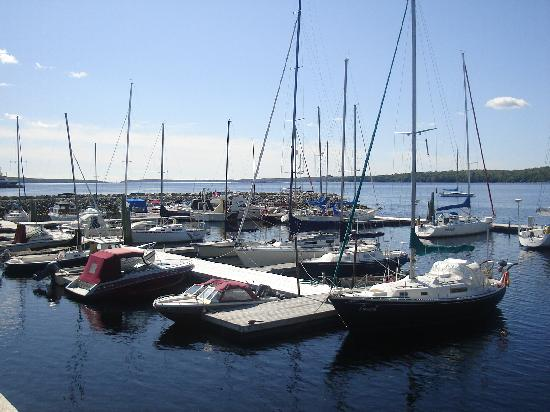 Shelburne Harbour Yacht Club