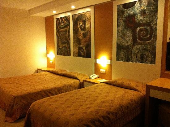 Alkoclar Adakule Hotel : room interior
