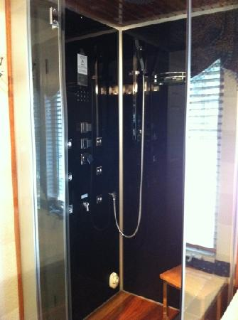 Cozy Rose Inn: this is the shower/steam shower. it has 3different shower settings. it's great!