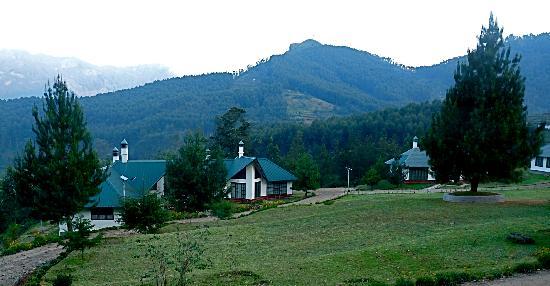 Camp Noel: Bungalow