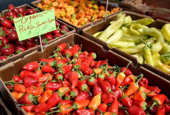 Fresh food at the Pasco Farmers' Market, Tri-Cities, WA - Photo by: www.winecountrycreations.com