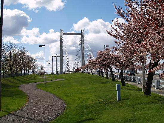 Cable Bridge in Pasco, Tri-Cities, WA - Photo by: Gary White