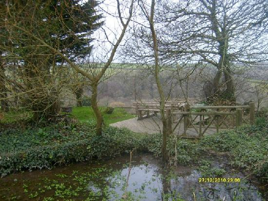 Country Ways Holiday Cottages: veiw from front door of warren of pond