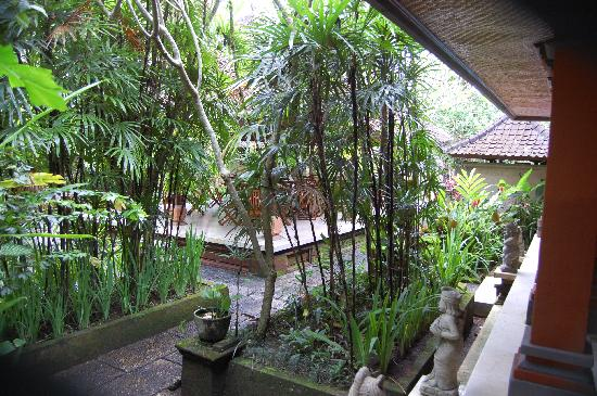 Puri Saraswati Bungalows : View from my porch