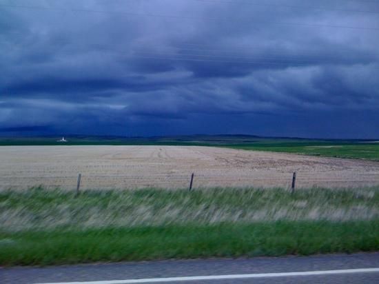 Cut Bank, MT: thunderstorm 6/10