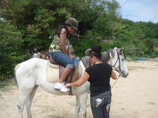 Jah Works Riding Stables: Jah Works