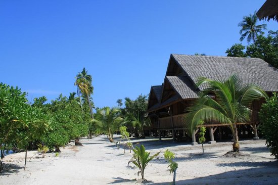 Patuno Resort Wakatobi: Luxury Beachside bungalows