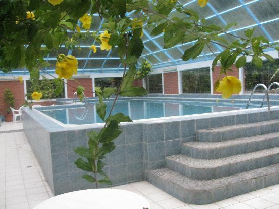 Rio Selva Resort - Yungas: Indoor Pool