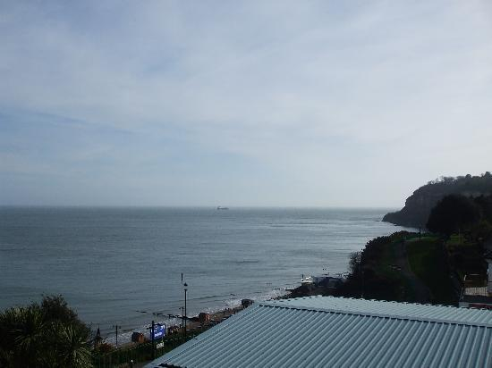 Ocean View Hotel: view to shanklin chine from our balcony
