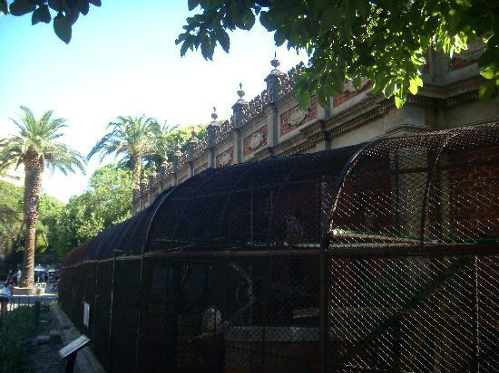 Zoo Buenos Aires: Bird enclosure - can barely see the animals!