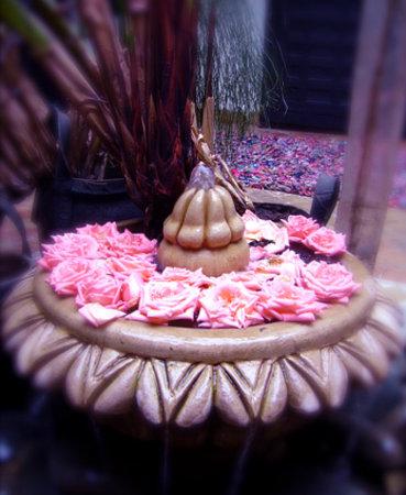 Riad Ta'achchaqa : La fontaine du patio