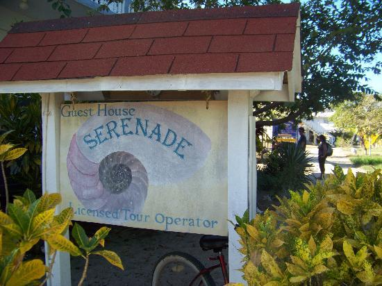Serenade Hotel: l'insegna deliziosa della guest house