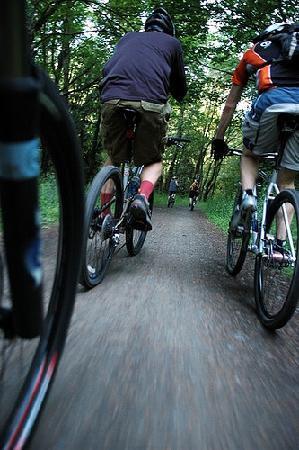 Marbella Rent a Bike : Cycling