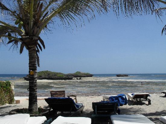 写真Aquarius Watamu Beach Resort枚