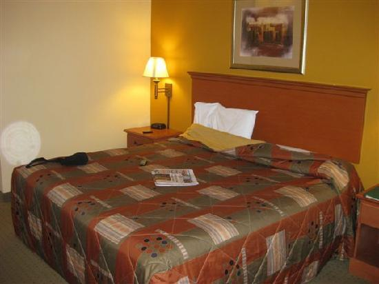 Super 8 Topeka At Forbes Landing: Bed