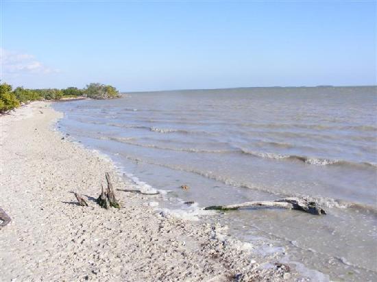 Flamingo Campground Updated 2018 Reviews Everglades National Park Fl Tripadvisor