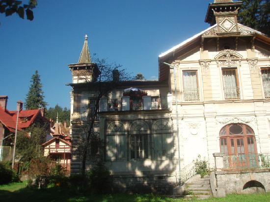 Hotel International Sinaia: Case tipiche primi '900