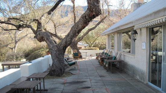 Elkhorn Ranch: the patio outside the dining room