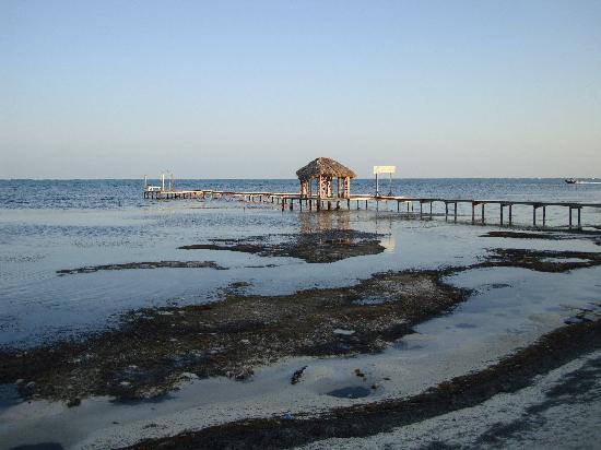 Royal Caribbean Resort: Beach/lagoon