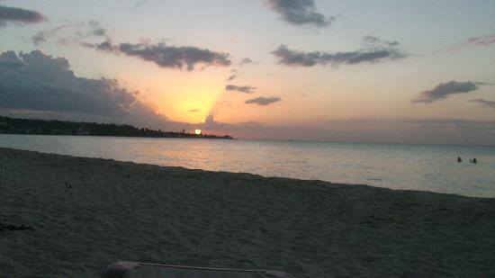 Coral Seas Garden: tramonto