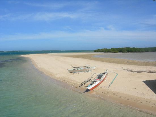 Angela's Farm: Island of Honda Bay trip