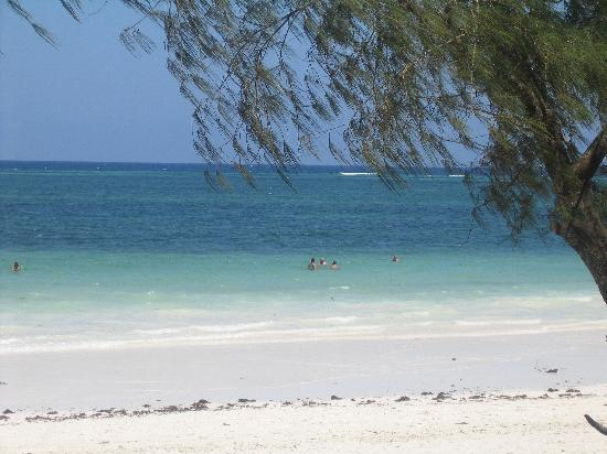 Diani Sea Lodge: Great beach