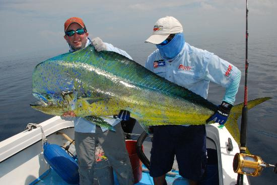 The Zancudo Lodge: Giant Mahi Mahi