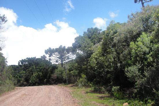 Cambará do Sul, RS: Canyon Fortaleza