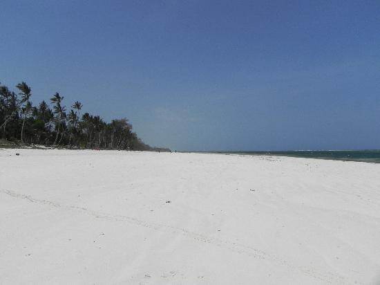 Diani Sea Resort: Diani Beach