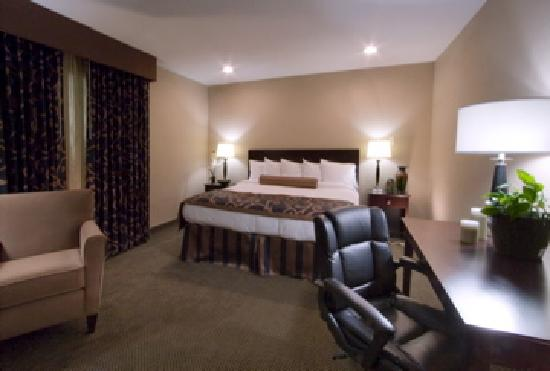 Best Western Plus Heritage Inn: King Guest Room