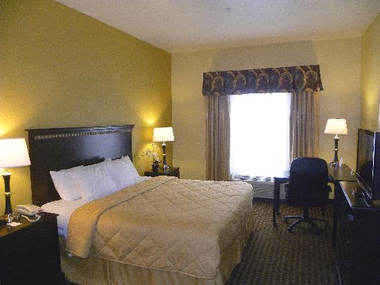 Comfort Inn & Suites Regional Medical Center: King Room