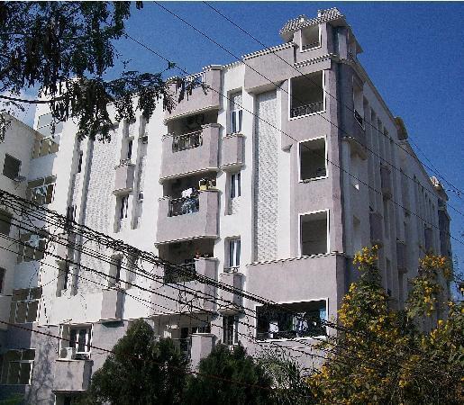 Urban Oasis Apartments