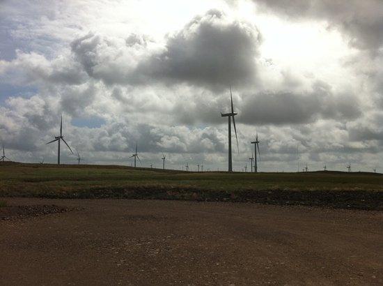 Whitelee Wind Farm Visitor Centre: wind farm