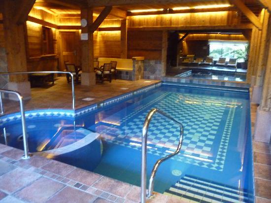 Les Bas Rupts Et Chalet Fleuri : piscine