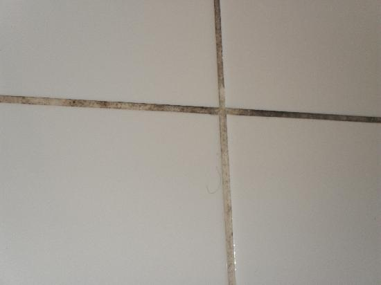 The Ventures Hotel: grouting in shower