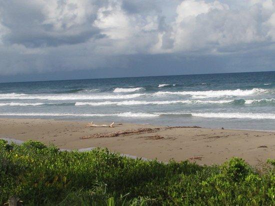 Aldeia da Mata Eco-Lodge : Beach at Aldea da Mata