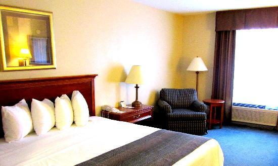 BEST WESTERN PLUS Cary Inn - NC State: king