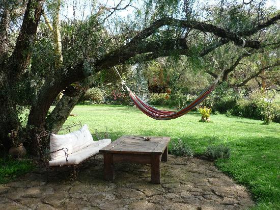 Sanctuary Farm: Garten