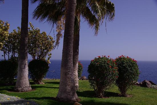 Hotel Jardin Tecina: Der Garten