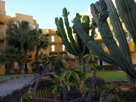 Monte Feliz: The gardens