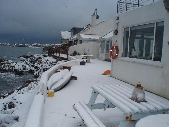 The White Cottages: the day before the  xmas swim! brrrrrrr!