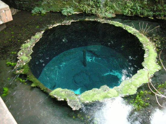 Kakitagawa Park: 神秘的な色
