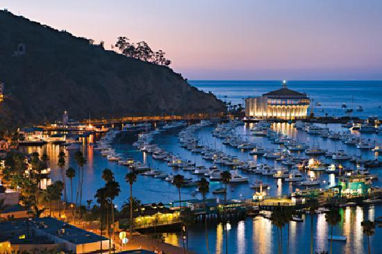 Catalina Island Reviews Things To Do